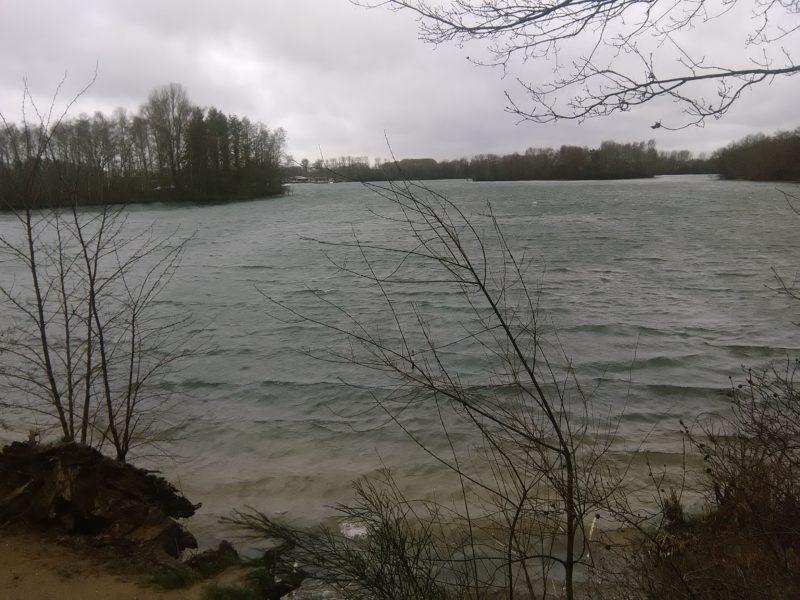 Effelder Waldsee Ufer am Rode Beek