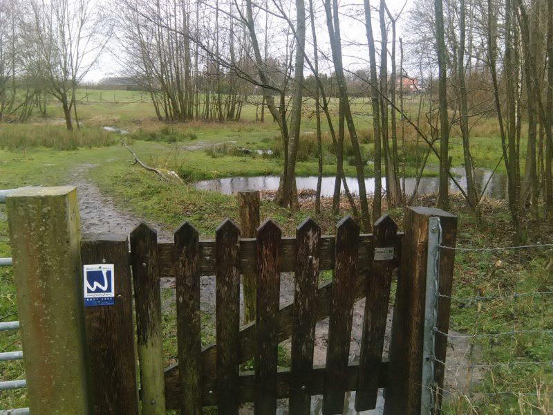 Gatter nahe des Effelder Waldsees am Wanderweg Rode Beek