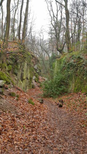 Steinbruch Relikte aus de m19. Jahrhundert